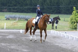 What Exercises Are Best For Dressage Riders?
