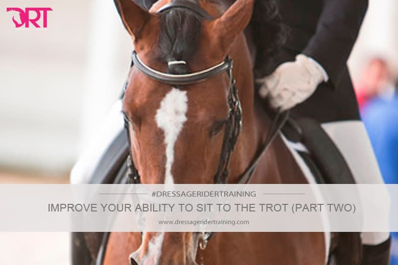 improve your ability to sit to the trot part 2