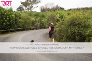 how much exercise should I be doing off my horse