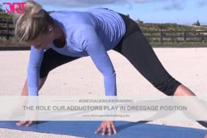 The role our adductors play in dressage position