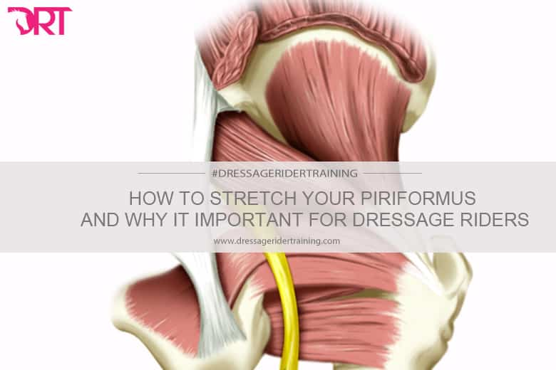 How to stretch your piriformis and why its important for dressage riders