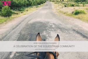A celebration of the equestrian community