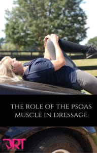the-role-of-the-psoas-muscle-in-dressage