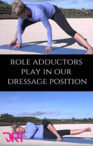 the role adductors play in our dressage position
