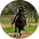 dressage rider fitness guide testimonial 4