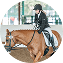 dressage rider fitness guide testimonial 3