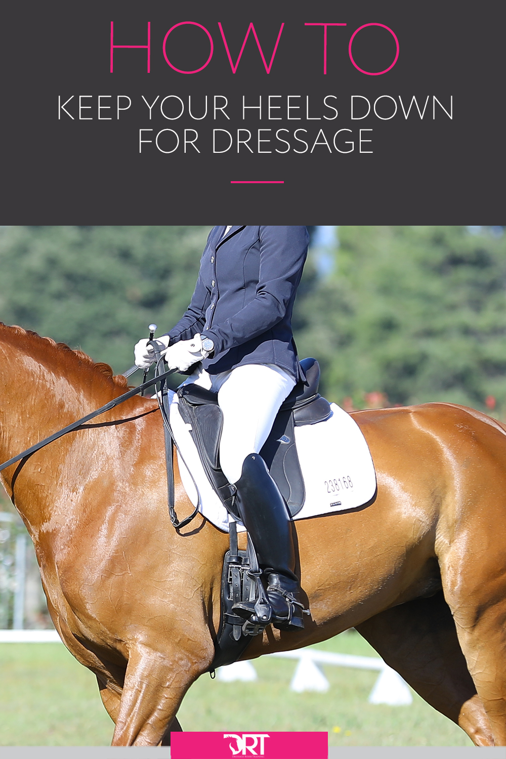 Here are some exercises to help with your heel position as a dressage rider. Including video on how to do them. #dressagerider #dressagetraining #dressage