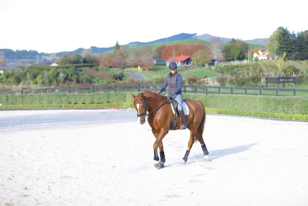 Hip Stretches For Horse Riders - Improve Mobility With These