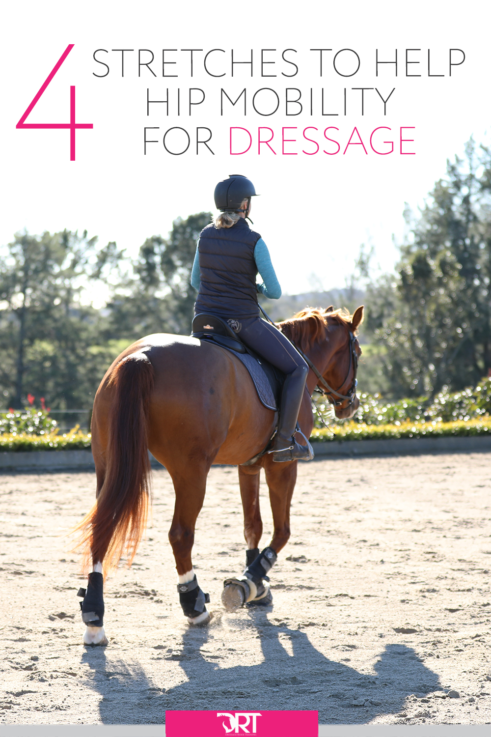 Heres a video explaining 4 stretches to help you with your hip mobility. #dressage #dressagerider #dressagetraining