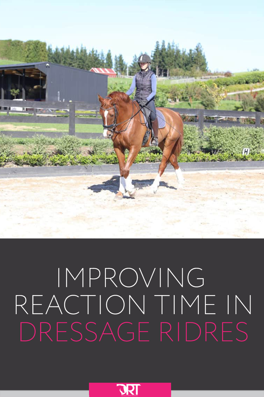 Learn how to develop your reaction time specific to dressage riding. #dressagerider #dressage #dressagetraining