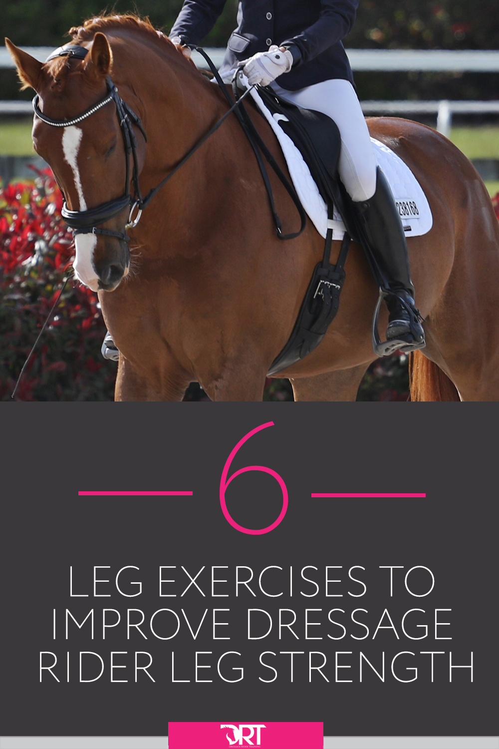 6 Leg Exercises To Help Improve Dressage Rider Leg Strength, including video on how to do each of the exercises. 