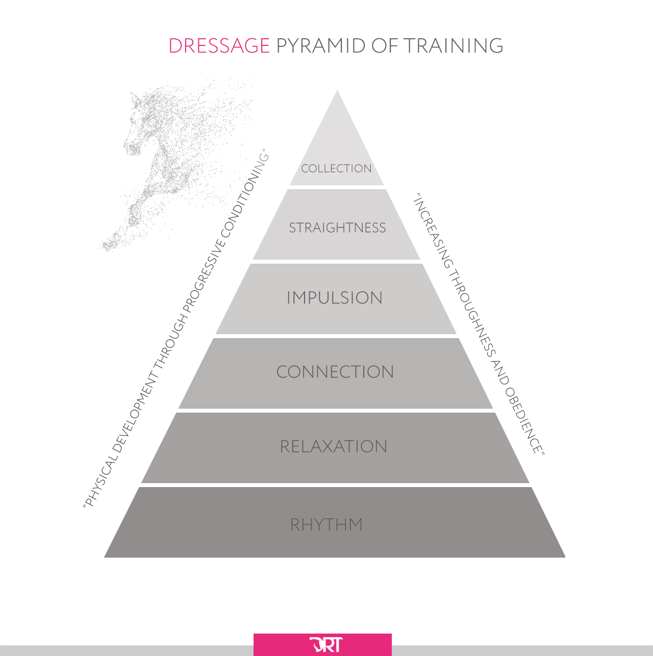 Dressage Pyramid of Training