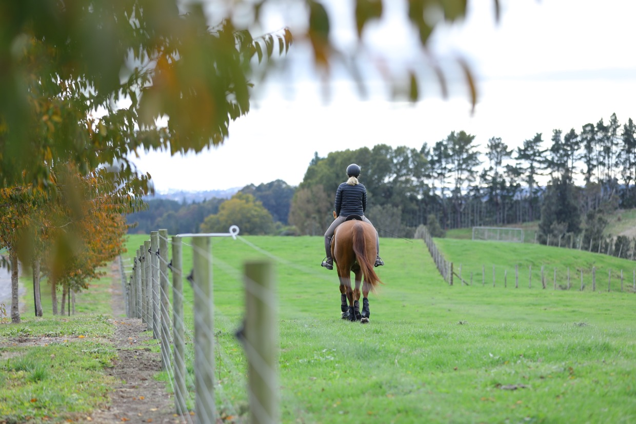 Equestrian Workouts To Improve Your Riding Fitness
