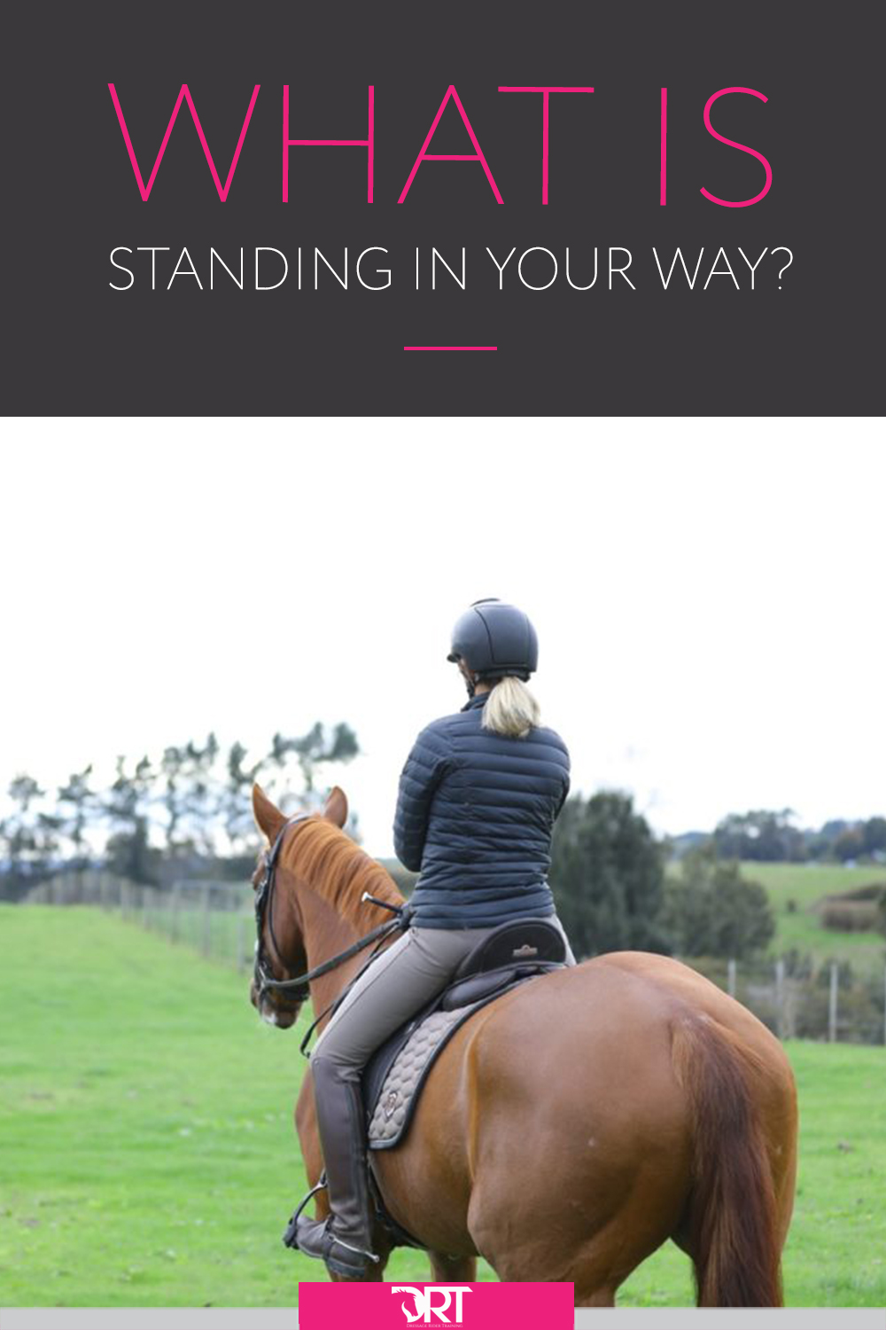 learn what two questions you need to ask yourself if you are serious about achieving your goals. #dressagemindset #dressagetraining #dressage